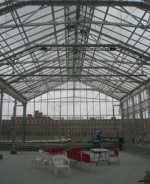 Joining the several nearby steeples in downtown Grand Rapids is the cathedral-like roof of the new Downtown Market. The glass allows sunlight to feed the greenhouse plants in the nursery underneath. The empty building in the background typifies the 7 empty warehouses that were demolished to clear the land for the city's first Downtown Market.